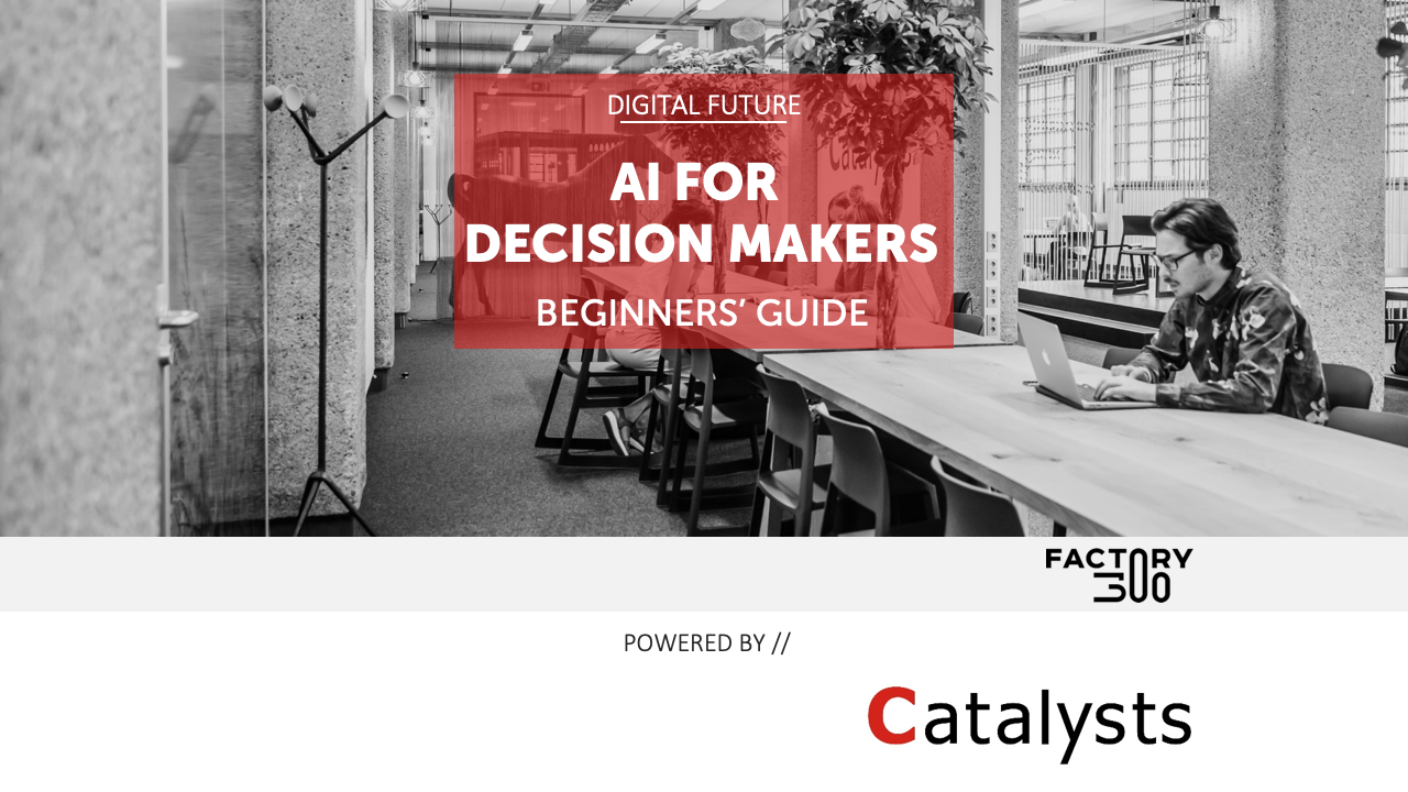 AI Beginners Guide for Decision Makers